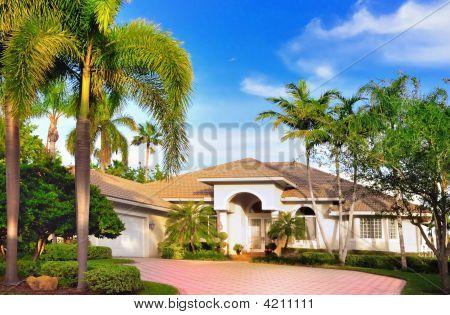 Modern American Home