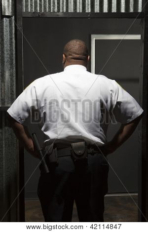 Rear view of security guard standing akimbo