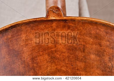 Detail Of The Cello - Back Texture View