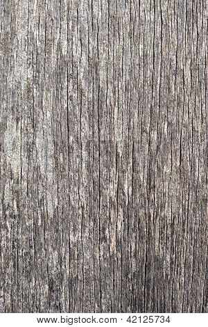Gray Wood Texture