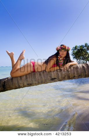 A Beautiful Polynesian Girl On A Palm Tree At A Hawaii Beach