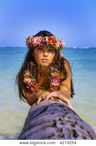 A Beautiful Polynesian Girl On A Palm Tree At A Hawaii Beach