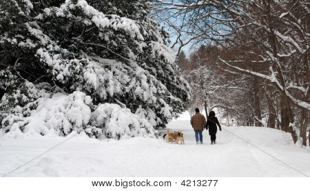 Winter Walk