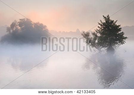 Beautiful Autumn Fall Landscape Over Foggy Misty Lake Wih Glowing Colors Sunrise