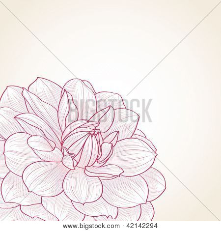 Hand-drawn floral  background. Vector flower dahlia. Element for design.