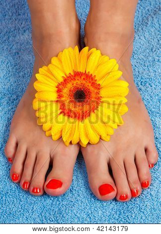 pedicure on foot