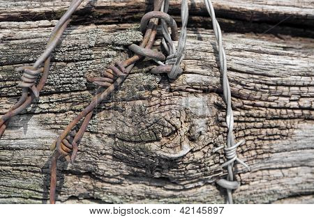 Rundown Wood And Barbed Wire