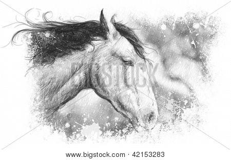 Horse illustration, tattoo art, sketch