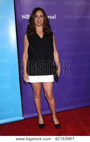 LOS ANGELES - JAN 06:  MAYA RUDOLPH arriving to TCA Winter Press Tour 2012: NBC Party  on January 06, 2012 in Pasadena, CA