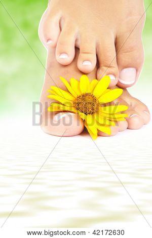 Pés femininos macios com pedicure e flores close-up