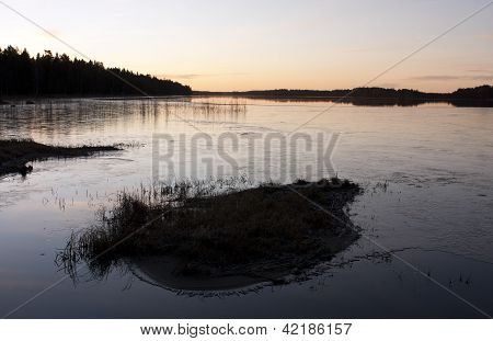 A tussock in a lake during a sunset.