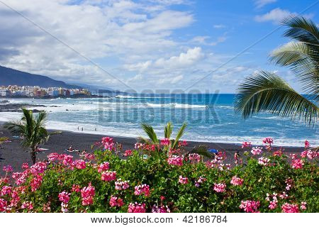 beach playa Jardin, Tenerife, Spain