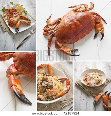 Crab Composition