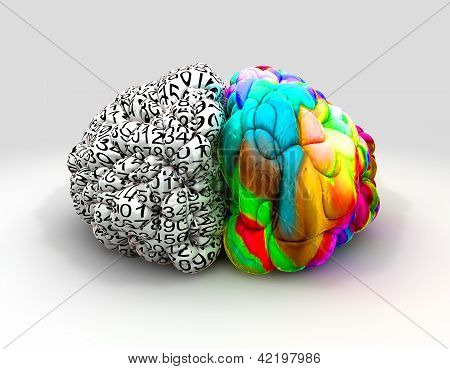 Left And Right Brain Concept Front