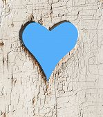 pic of outhouse  - Heart shape look out on wooden door to outhouse - JPG