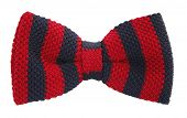 foto of bow tie hair  - Bow tie with red and navy blue stripes - JPG