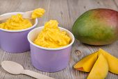 stock photo of gelato  - Serving of frozen homemade creamy ice yoghurt with fresh mango and wooden spoon - JPG