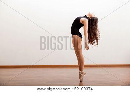 Sexy female ballet dancer