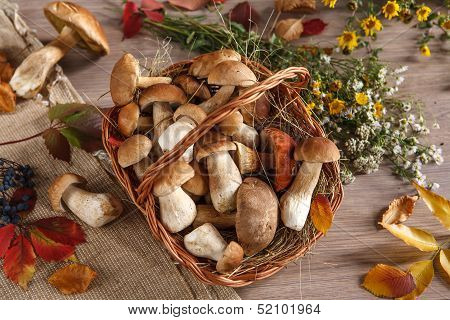 Still-life representing a basket, flowers, mushrooms