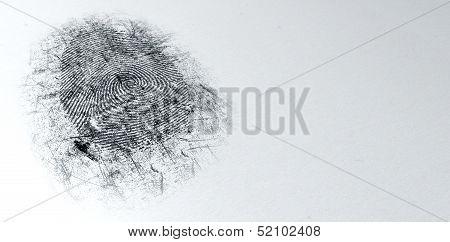 Dusted Crime Scene Fingerprint