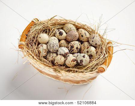 Quail eggs nutrition