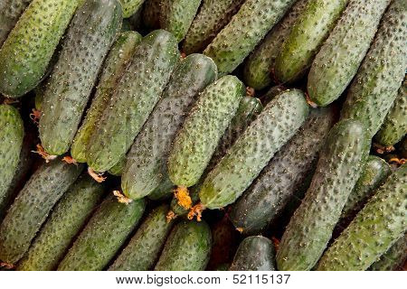 Pile of fresh cucumbers lying diagonally