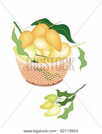 Brown Basket Of Sweet Mango Fruits