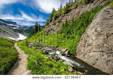 Fragment of Mount Baker trail in Washington, USA