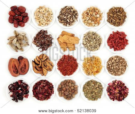 Chinese herbal medicine selection in white porcelain dishes over white background.