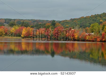 Bright Fall Reflection