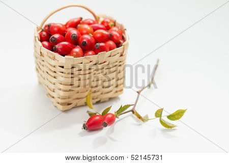 Freshly picked rose hips in small basket