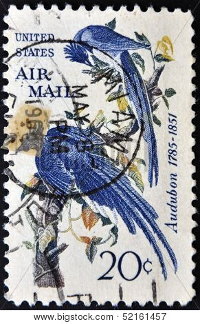 United States - Circa 1963: Stamp Printed In United States, Shows Columbia Jays, Audubon, Circa 1963