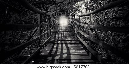 Abstract Bw Wooden Bridge