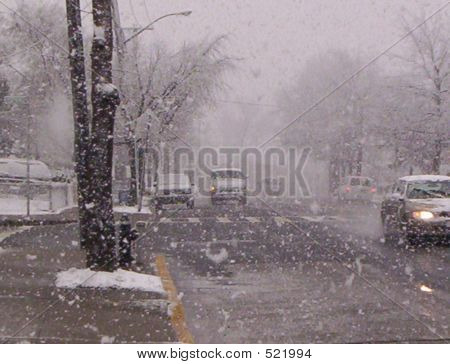 Blizzard In A Suburban Neighborhood