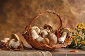 image of edible mushroom  - studio photography of wicker basket with edible mushrooms - JPG