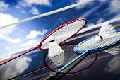image of shuttlecock  - Shuttlecock on badminton racket - JPG