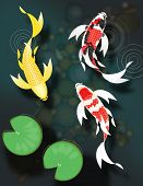stock photo of butterfly fish  - Stylized butterfly koi fish swimming in pond with lily pads - JPG