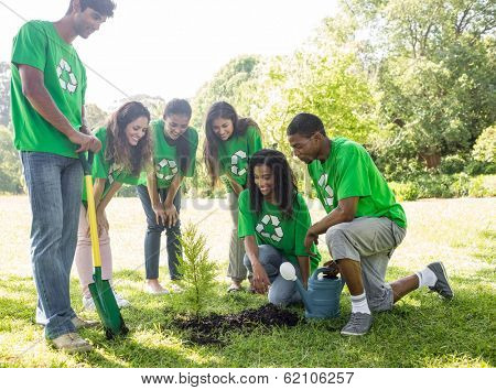 Group of environmentalists looking at plant in park