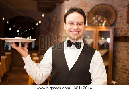 Portrait of a smiling waiter at work