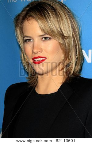 LOS ANGELES - MAR 22:  Cody Horn at the Backstage At The Geffen Gala at Geffen Playhouse on March 22, 2014 in Westwood, CA