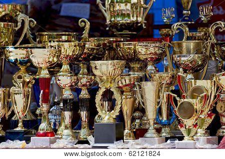 Winning Trophies