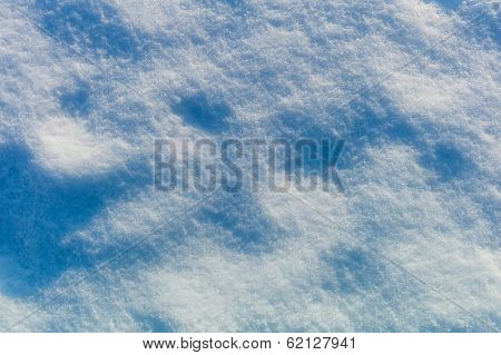 animal tracks under a blanket of snow, symbol photo for winter, attention and intuition