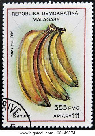 stamp printed in Madagascar shows Bananas Musa Fruit