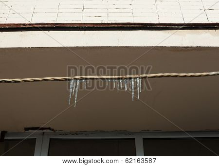 Several Melting Icicles