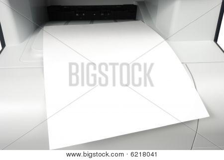 Blank Printout