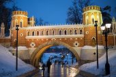 RUSSIA, MOSCOW - DEC 22, 2013: People walks on territory of Catherine Palace in Tsaritsyno.