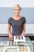 stock photo of jewel-case  - Shop assistant at the window case with rings at jeweler - JPG