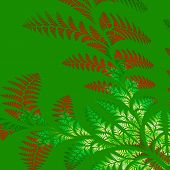 stock photo of asymmetrical  - Asymmetrical pattern of the leaves in red and green - JPG