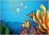 stock photo of underworld  - Illustration of a deep sea with beautiful coral reefs and fishes on a white background - JPG