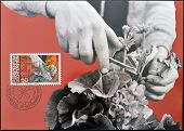 stamp printed in Liechtenstein dedicated to Man and work shows horticulture